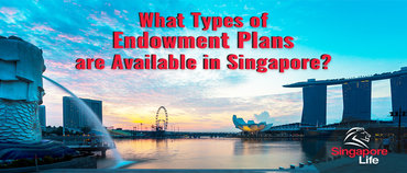 What Types of Endowment Plans are Available in Singapore?